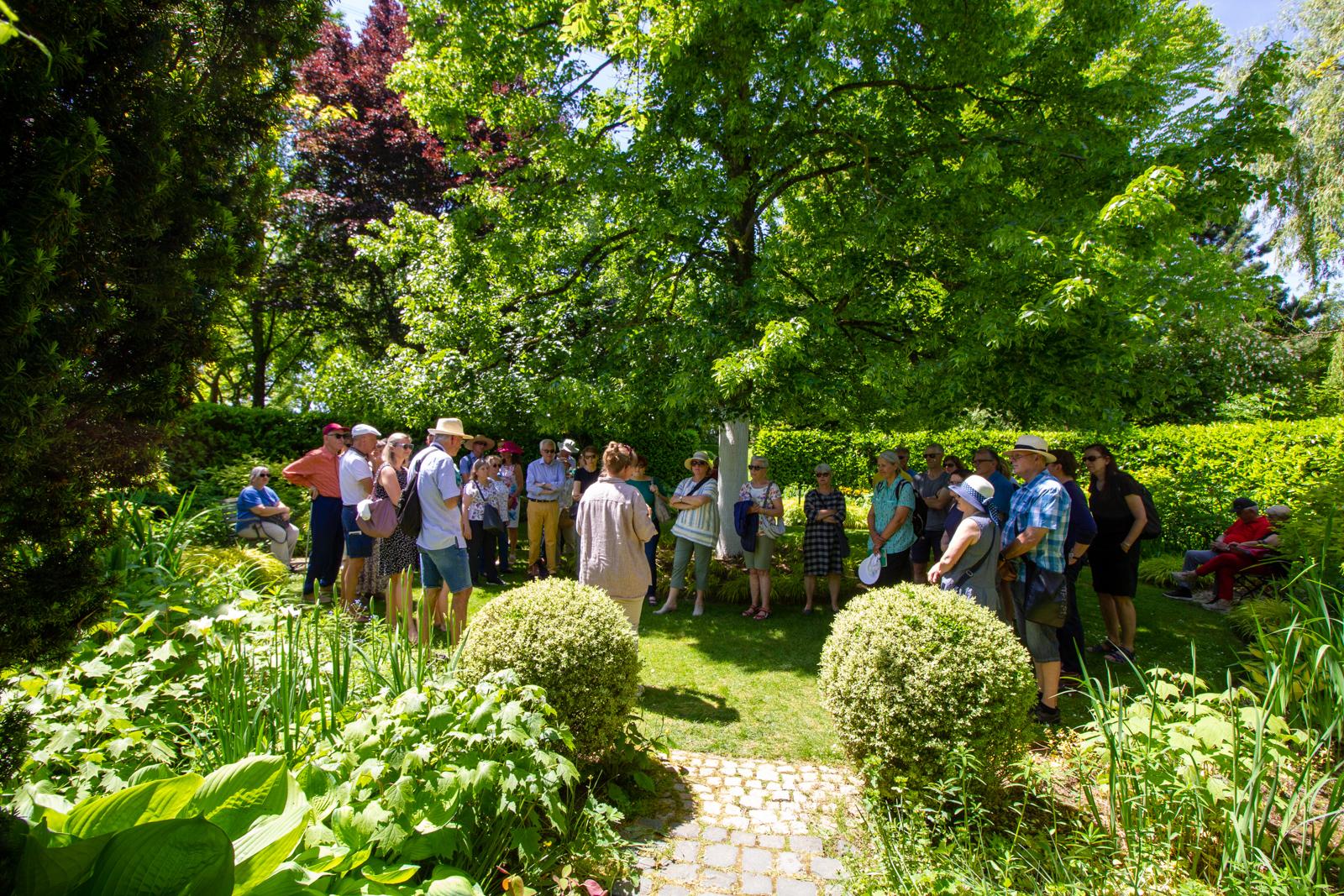 Rosen-Ausflüge durch die Ettenbühler Gärten