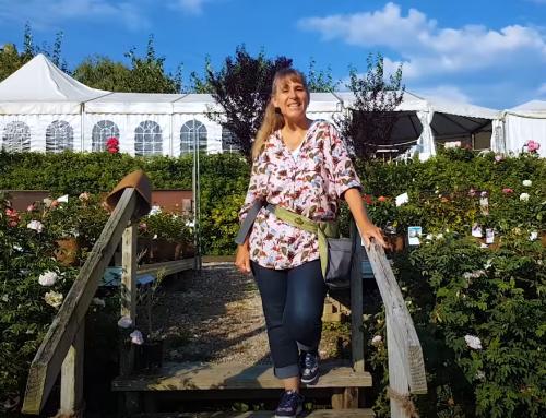Video: Spätsommer in den Gärten